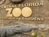 Just Keep Growing – Central Florida Zoo Expansion