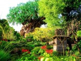 Happy 15th Anniversary to Walt Disney World's Most Under-appreciated Theme Park: Animal Kingdom