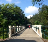 Walking the Walk – The Wekiva Trail