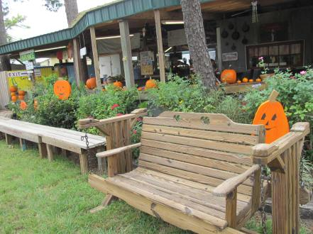 25 - pumpkin bench