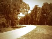 road9