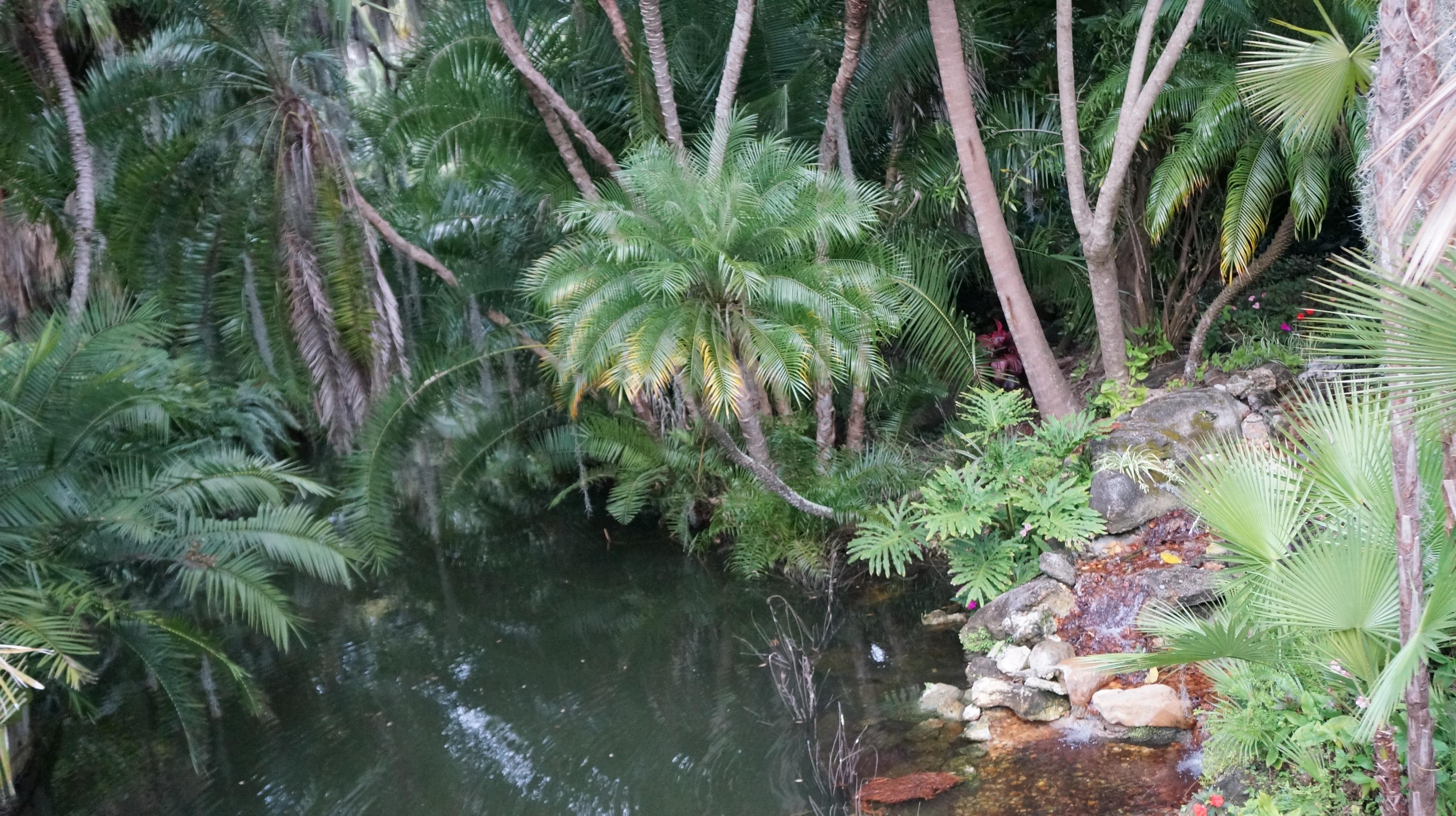 a walk through cypress gardens u2013 the best part of visiting - Cypress Gardens Nursing Home