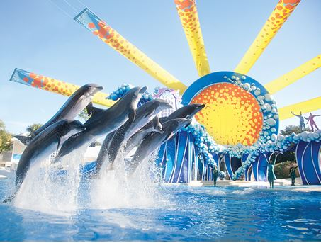 Photo courtesy of SeaWorld.com