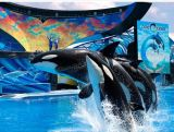 SeaWorld's embarrassing marketing move