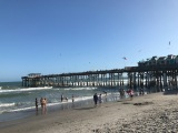 My 2017 Florida TravelResolution